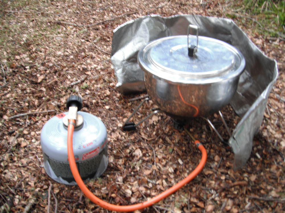 Single gas stove